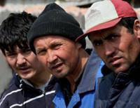Даниловское село — привлекает мигрантов